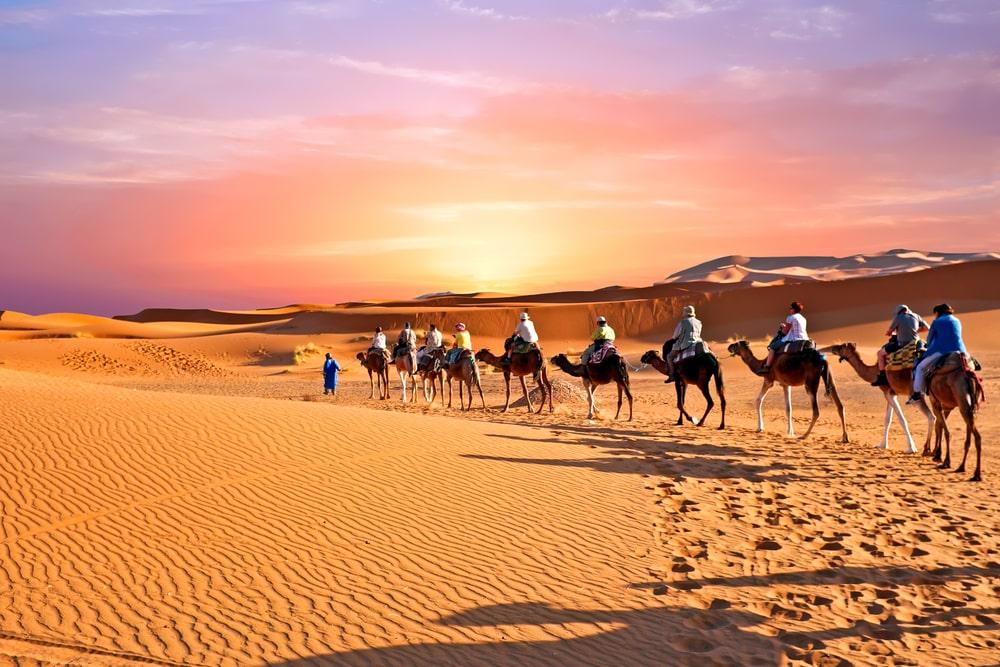 Gobi Desert_Science ABC