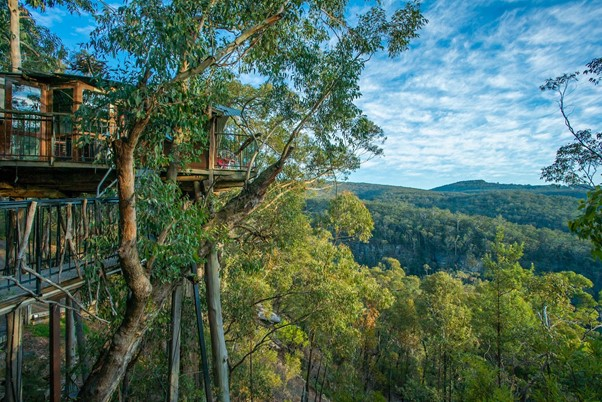 Treehouse Vacation Rentals_Air Doctor